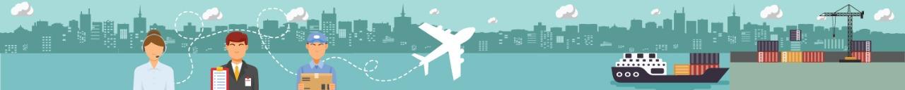 Air Custom Clearance
