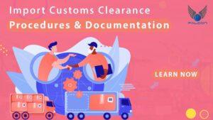 Import Cargo Customs Clearance Procedures & Documentation
